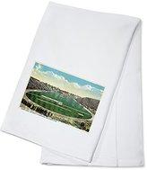 Ann Arbor, Michigan - University of Michigan; Ferry Field View (100% Cotton Absorbent Kitchen Towel)