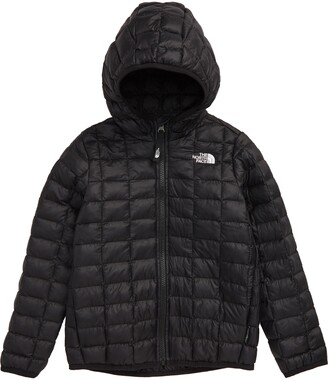 The North Face ThermoBall(TM) Eco Hooded Jacket