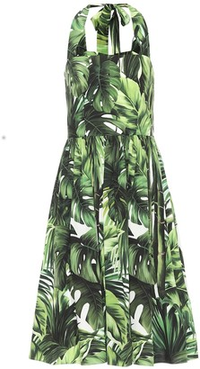 Dolce & Gabbana Halterneck cotton midi dress