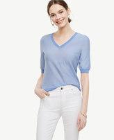 Ann Taylor Pinstriped Extrafine Merino Wool Short Sleeve V-Neck Sweater