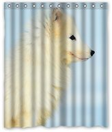 "Arctic Fox Background Waterproof Shower Curtain/Bath Curtain-Size: 60"" x 72"""