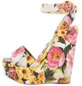 Dolce & Gabbana Floral Brocade Wedge Sandals