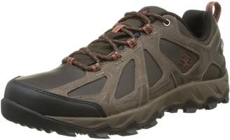 Columbia Men's Peakfreak XCRSN Ii Low Leather Outdry Waterproof Multi-Sport Shoes Brown (Cordovan Sangu 231) 9 UK