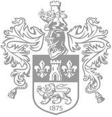 Anderson's Tricolour Melange Zig Zag Woven Belt