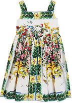 Dolce & Gabbana Floral Cotton Poplin Dress