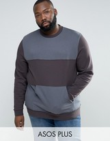 Asos Plus Sweatshirt With Cut & Sew Panels