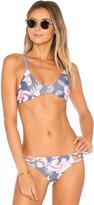 Stone Fox Swim Indie Bikini Top