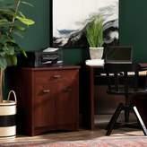 Three Posts Ellenburg Printer Storage Cabinet Finish/Color: Sumptuous Cherry
