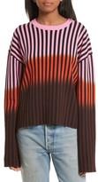 Opening Ceremony Women's Dip Dye Stripe Crewneck Sweater