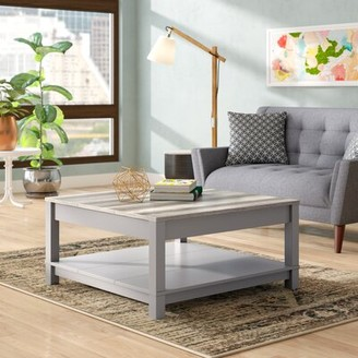 Andover Mills Zahara Coffee Table with Storage Base Color: Gray