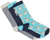 Swell Gracie Women%27s Socks in a box %28Pack of 3%29