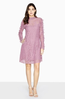 Little Mistress Jasmine Lace Shift Dress With Frills