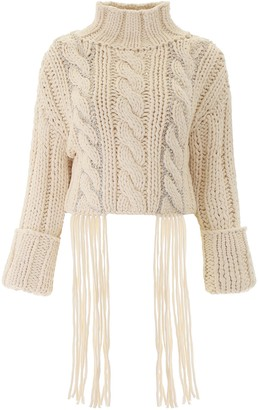 Area Fringe Trim Cropped Turtleneck Sweater