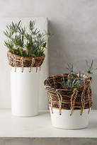 Anthropologie Seagrass Vase