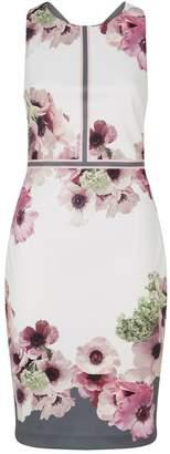 Ted Baker Floral Nanina Dress
