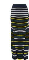 Pringle Stripe A-line Knit Skirt
