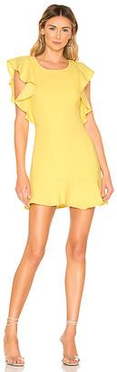BCBGeneration Ruffle Sleeve Mini Dress