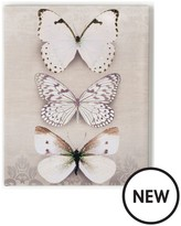 Graham & Brown Butterfly Trio Canvas