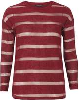 Dorothy Perkins Berry mesh stripe top
