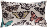 Harlequin Papilio Cushion - 30x50cm - Vintage