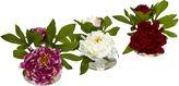 Asstd National Brand Peony With Glass Vase Set Of 3