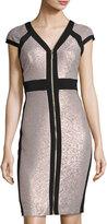 Jax Cap-Sleeve Zip-Front Dress, Ash/Black