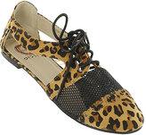 Leopard Ryley Oxford