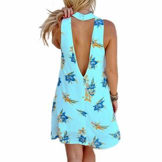 Loalirando Summer Dresses for Women Floral Printed Halter Neck Sleeveless Open Back Mini Beach Sundress (Blue XL)