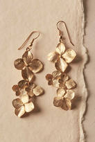Anthropologie Gilt Dogwood Earrings