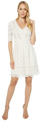 Vince Camuto Lace Fit-and-Flare with Scallop at Elbow Sleeve and Skirt and Trim Detail (Ivory) Women's Clothing
