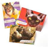 GARTNER STUDIOS Gartner Greetings Pet Humor Greeting Cards 3 pack, Birthday