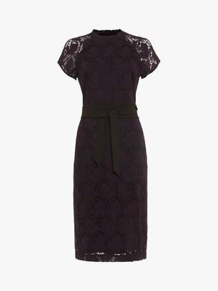 Phase Eight Henrietta Lace Dress, Deadly Nightshade