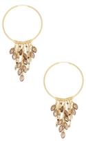 Chan Luu Chained Loop Earrings