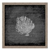 PTM Images Sea Fan I Wall Art