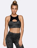 Lorna Jane Sophia Sports Bra