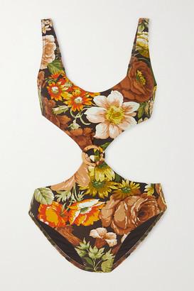 Zimmermann Bonita Cutout Floral-print Swimsuit - Brown