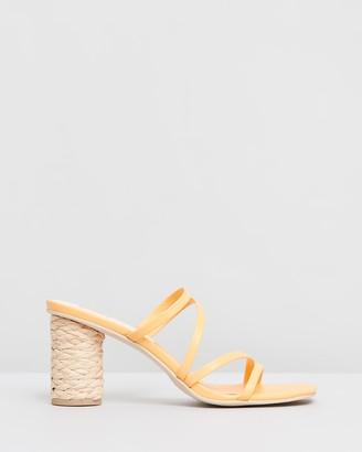 Dolce Vita Nova Block Heels