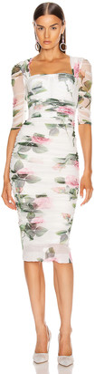 Dolce & Gabbana Floral Midi Dress in Rose | FWRD