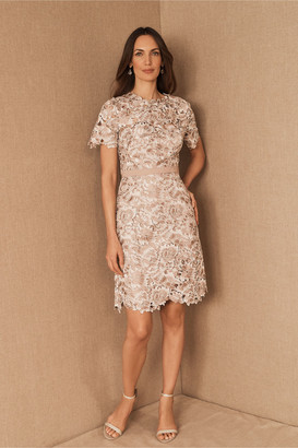 JS Collections Reyes Dress