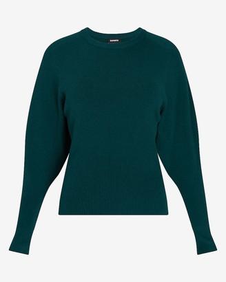 Express Puff Sleeve Crew Neck Sweater