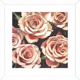 McGaw Graphics Roses by Elizabeth Hellman (Framed)