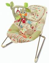 BabyCenter Fisher-Price Woodsy Friends Comfy Time Bouncer