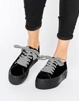 Sixty Seven SixtySeven Sixtyseven Flatform Zebra LaceUp Sneaker