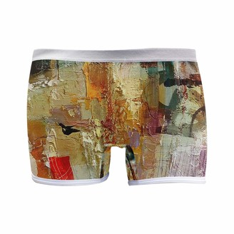 Colormu Boxer Briefs Underwear for Women Boyshort Panties Soft Sky Lark in The Winter
