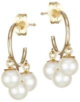 Chicco Zoë 14K Yellow Gold & 4MM White Cultured Freshwater Pearl Hoop Earrings