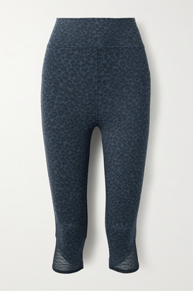 Eres Vitali Cropped Mesh-trimmed Leopard-print Stretch-knit Leggings - Blue