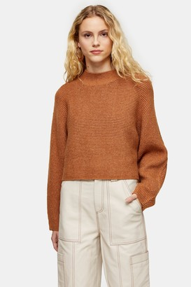 Topshop Camel Ribbed Cropped Knitted Sweater