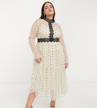 Lace & Beads Plus long sleeve polka dot midi dress with lace inserts in cream and black