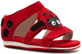 Emu Girls' Little Creatures Ladybird Sandal