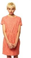 Dolce Vita Coral Lace Dress